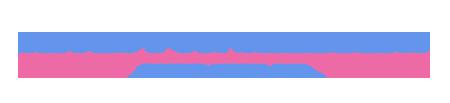 sfsf-logo-header